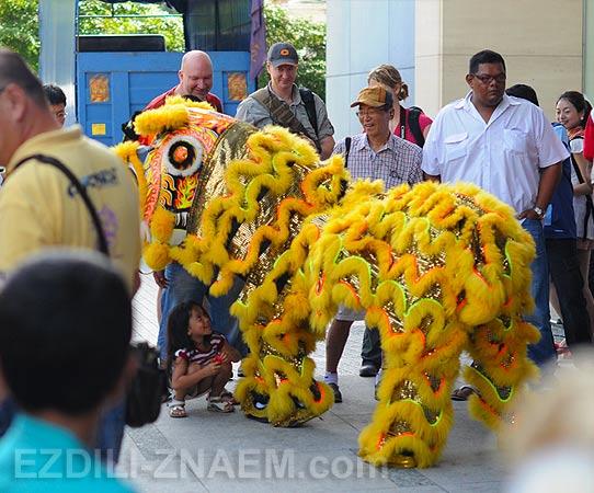 Танец Льва в китайский Новый год на Пенанге. Малайзия